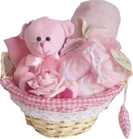 Baby Rose 9 Piece Gift Hamper