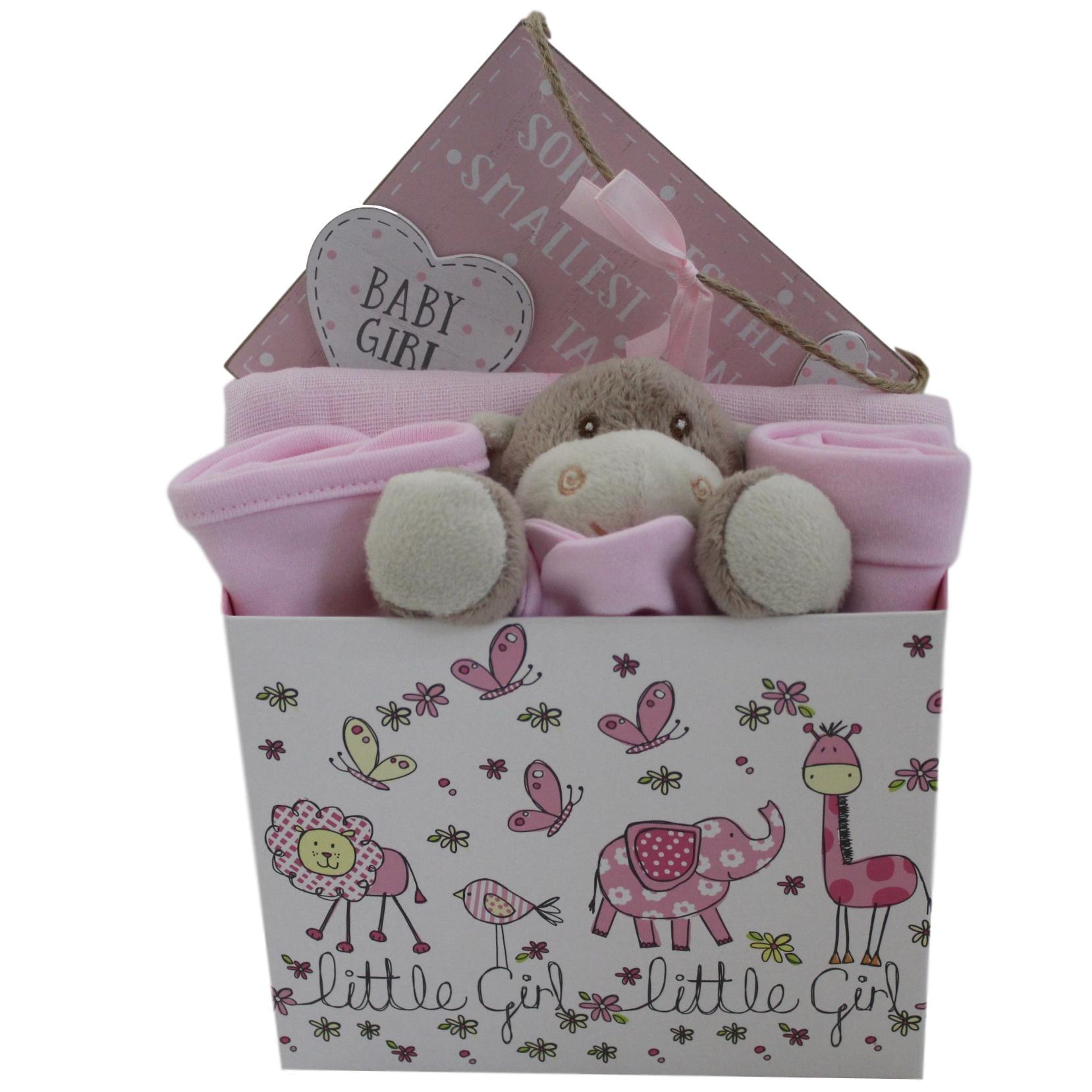 253728b4c4d6c Peek A Boo 8 Piece Baby Girl Gift Box Hamper – Baby Hamper Gift